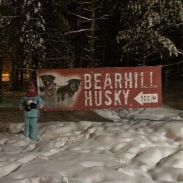 Bearhill Husky at Santa Claus Village in Rovaniemi, Finland