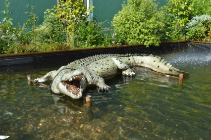 Nile crocodile at Alcorn's Tropical World in Donegal