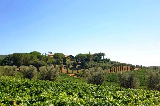 Tuscan Villa at Petra Winery in San Lorenzo