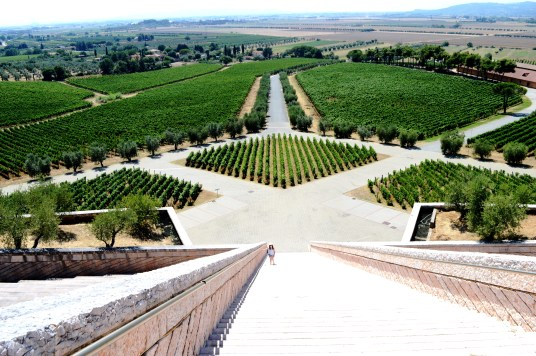 Stairway to Heaven at Petra Winery in Tuscany