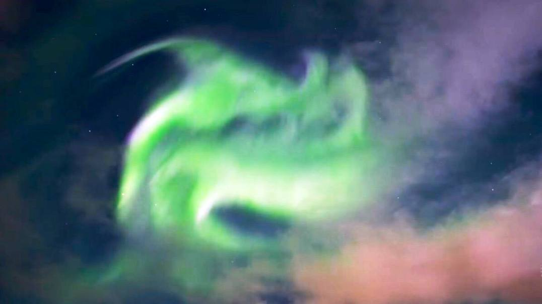 Northern Lights Fox in the Sky