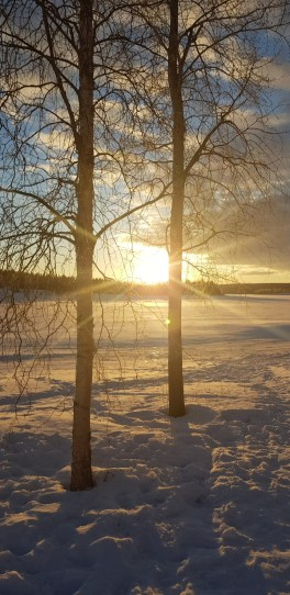 Sunrise at A Cosy Cottage by the River in Rovaniemi