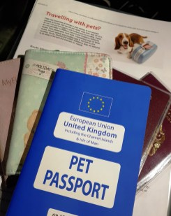 Pet Passport for travelling on Stena Line with your dog