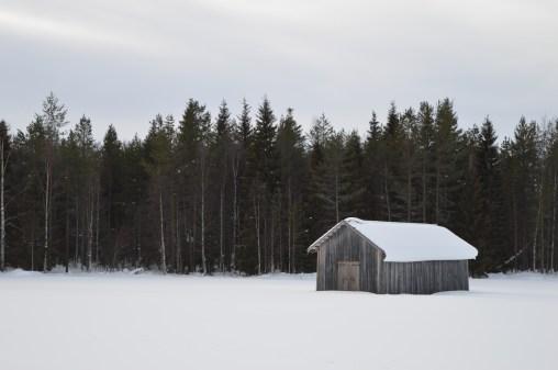 Winter in Finnish Lapland