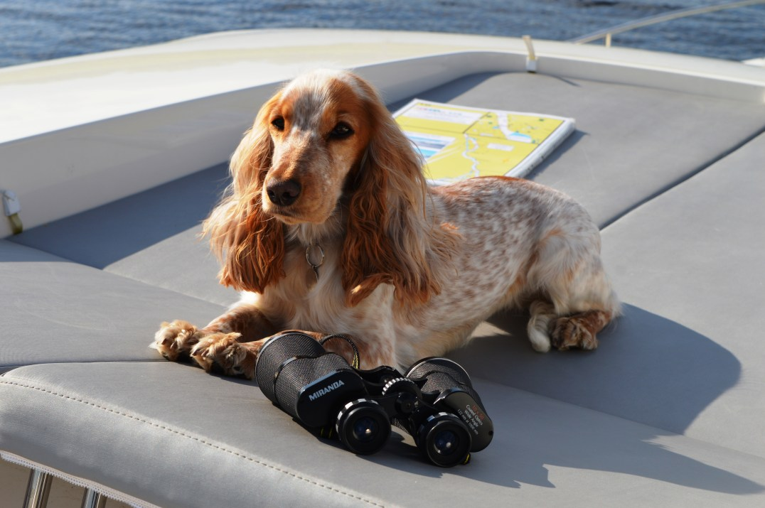 Rosie on board the Le Boat Horizon 4