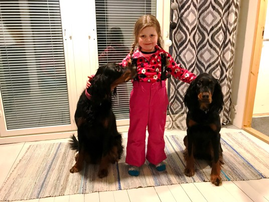 Matilda and two gorgeous Gordon Setters owned by Anna and Samuli from A Cosy Cottage by the River, Ruka