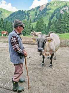 A farmer tends to his herd at Malga Pampeago, Italy