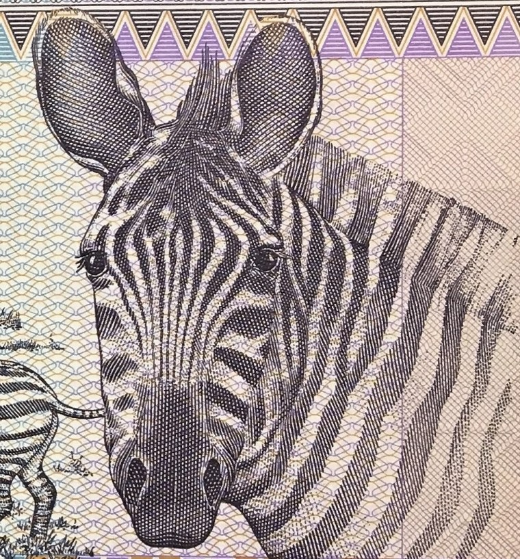 closeup detail of  Rwanda 100 Francs Banknote, Year 1989 front, featuring zebra