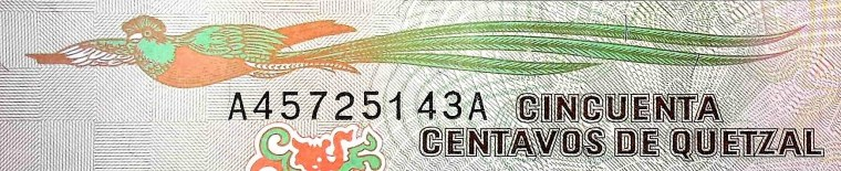 closeup detail of Guatemala 50 Centavos Banknote, featuring quetzal bird in flight