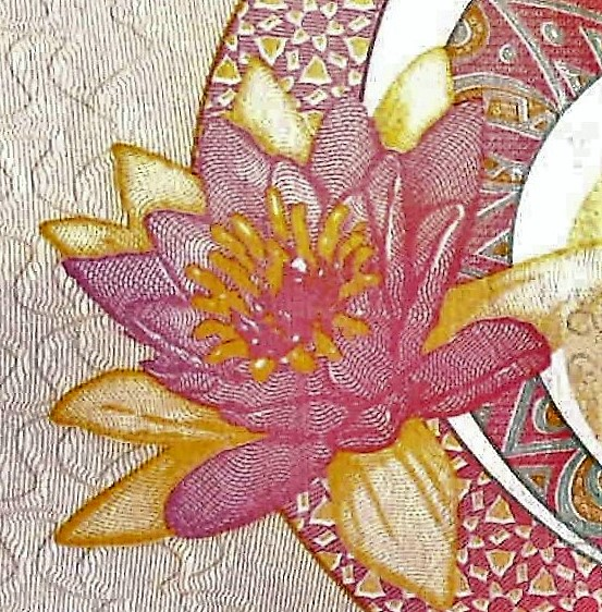 closeup water lily details of Guyana 50 Dollar Banknote, Year 2016 back