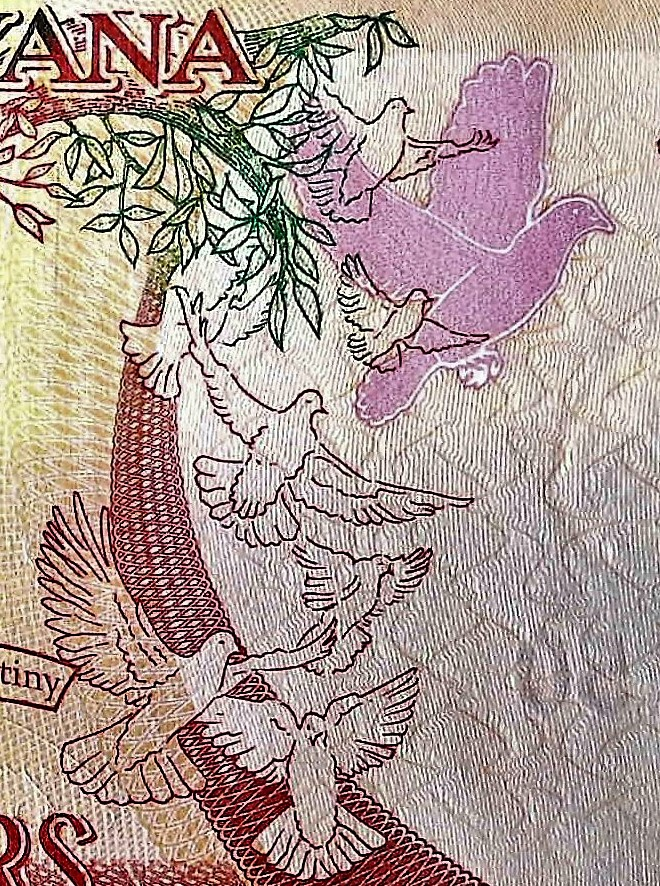 closeup details of Guyana 50 Dollar Banknote, Year 2016 front, featuring doves in flight
