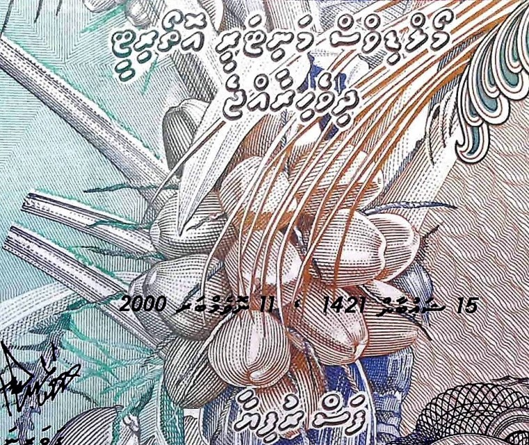 closeup detail of Maldives 5 Rufiyaa Banknote back