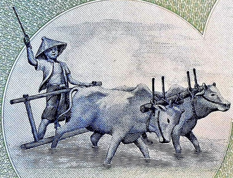 closeup detail from Myanmar 90 Kyats Banknote  back, featuring farmer working in fields with oxen team