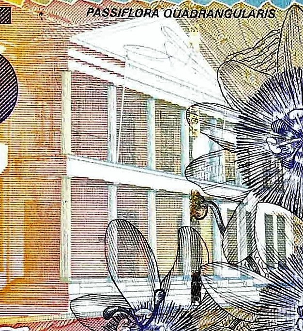 closeup detail from Suriname 5 Guden Banknote, Year 2000 back