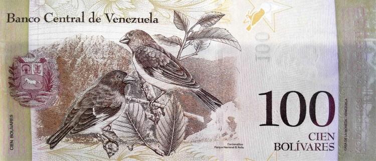 Venezuela 100 Bolivares Banknote, Year 2013 , back featuring birds