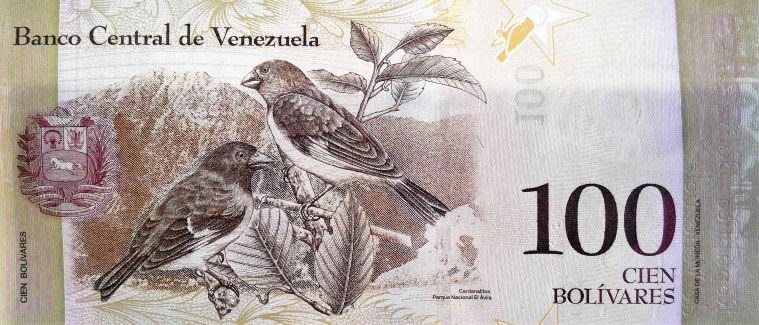 Venezuela 100 Bolivares Banknote, Year 2013 , back featuring birds