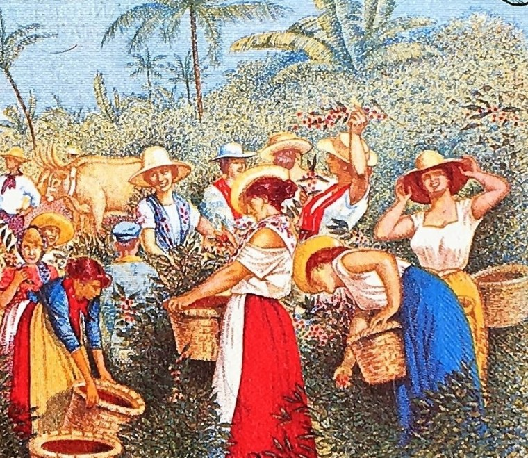 closeup detail of Costa Rica 5 Colones Banknote, Year 1990 back, featuring women harvesting coffee beans