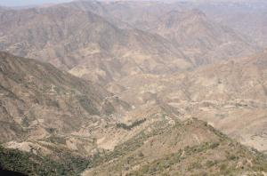 eritrea nakfa