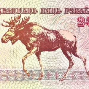 Belarus 25 Ruble 1992 banknote face featuring a moose in profile