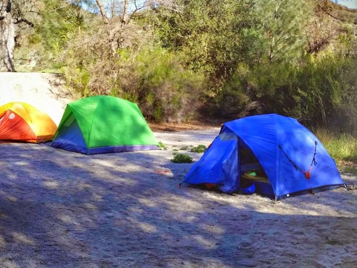 Tents in a campsite