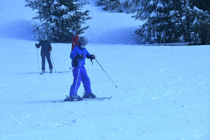 A young man in blue with skis and poles on a white field with snow covered trees in the background