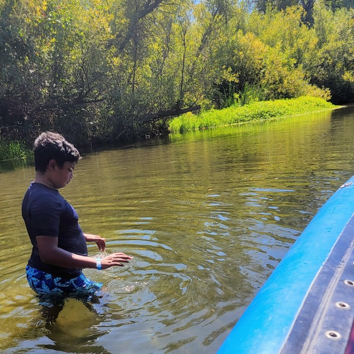A young man walking and swimming in the Russian River