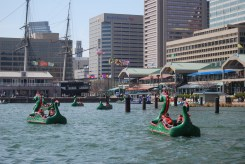 Dragon boats in the Baltimore Harbor