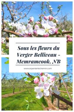 fleurs verger belliveau tourisme nouveau-brunswick