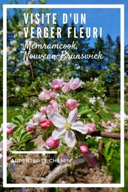 verger fleuri moncton nouveau-brunswick voyage arpenter le chemin