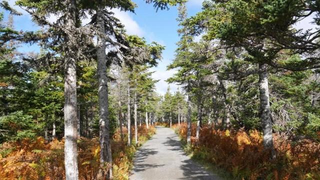 parc national cap breton nouvelle-ecosse canada road-trip