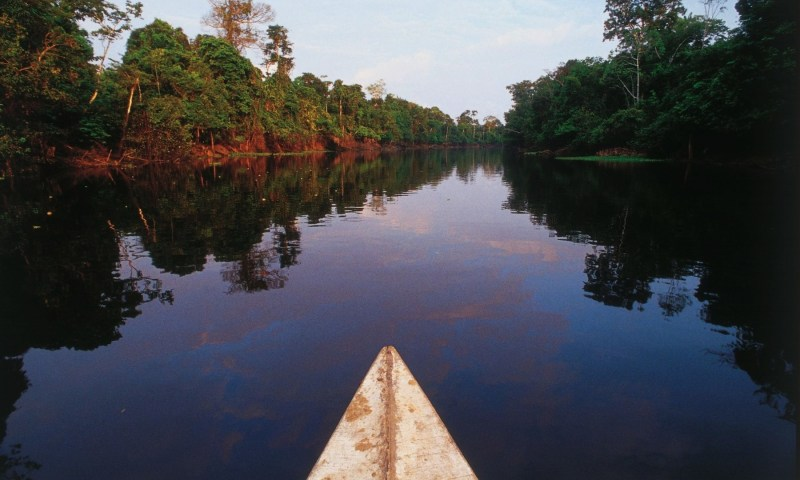 Gobernadores de amazonia peruana participan de encuentro sobre clima y bosques