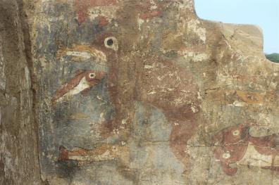 Pintura mural-Magnífica pintura mural del mundo mochica, en la que aparecen un lobo marino comiendo peces y una raya.Foto: Museo Tumbas Reales de Sipán