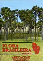 Flora Brasileira – Palmeiras