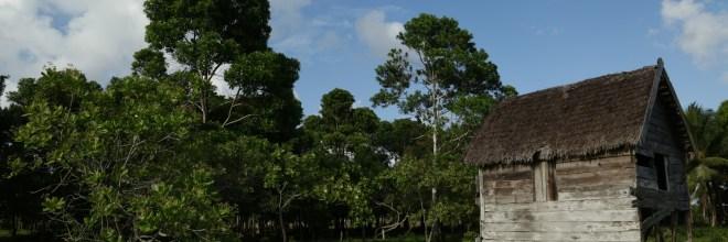 Por las selvas del mundo: Tradición Constructiva en Laka Tara, una comunidad vernácula en Honduras