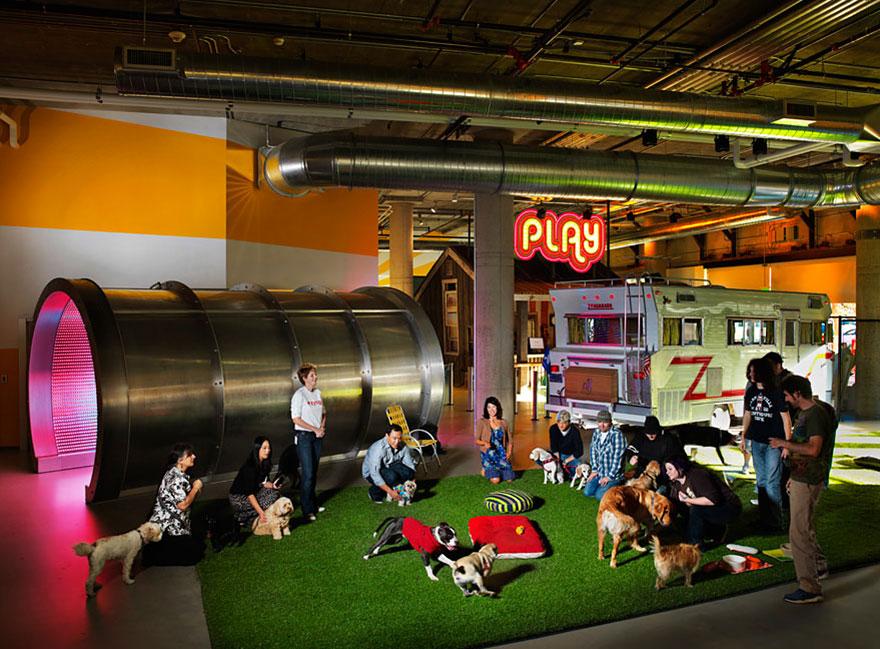 Las 12 oficinas mas chulas del mundo - Arquitectura Ideal - Zynga 1