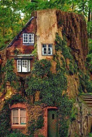 casas naturaleza 12
