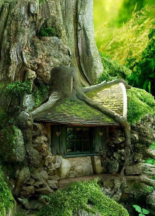 casas naturaleza 15