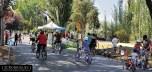 Ciclorecreovía calle Mariano Sanches Fontecilla, Providencia 2014