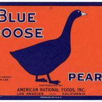 The Goose es La Gruta