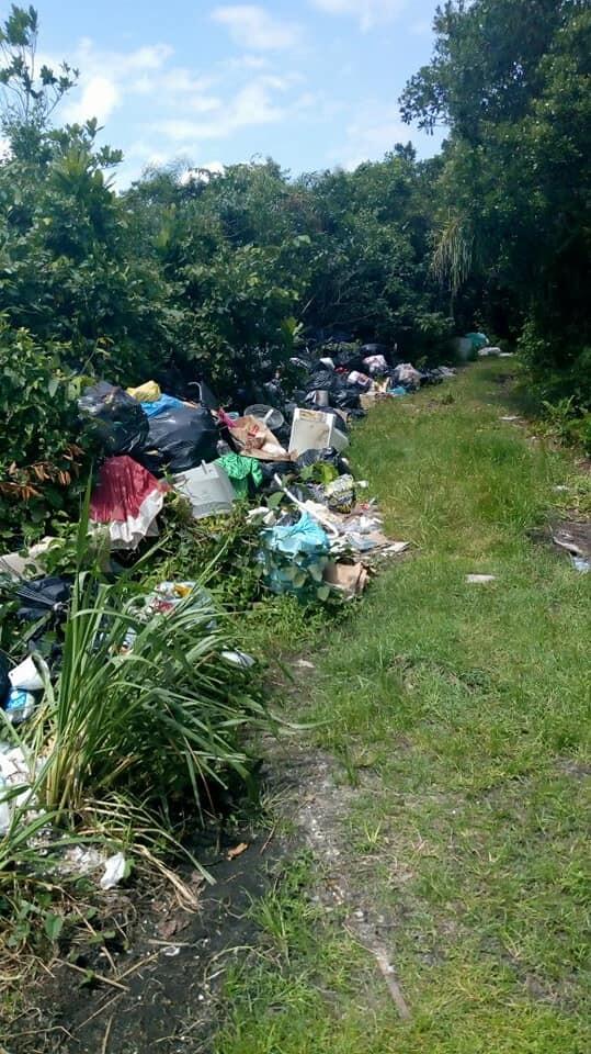 JB Litoral traz denúncia de vereador e MPPR cobra coleta de lixo céu aberto 6