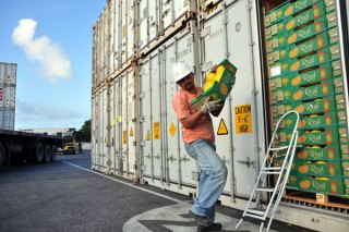 Carregamento de contêiner para exportação de melão, em Natal: A fruta manteve o crescimento este ano, mas outras caíram