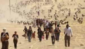 ARN001200400151120_Yezidi