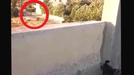 ARN00120040015113195_Sniper_Israel_Tembak_Pria_Palestina