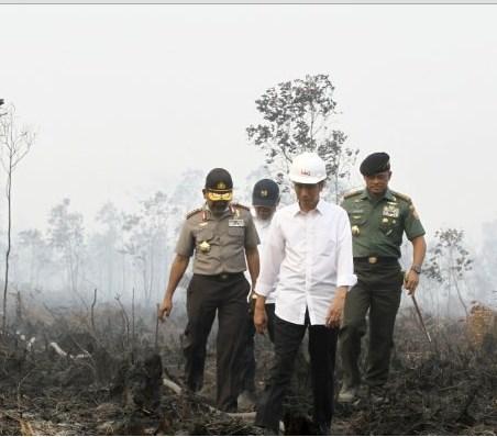 Jokowi dan Kebakaran Asap