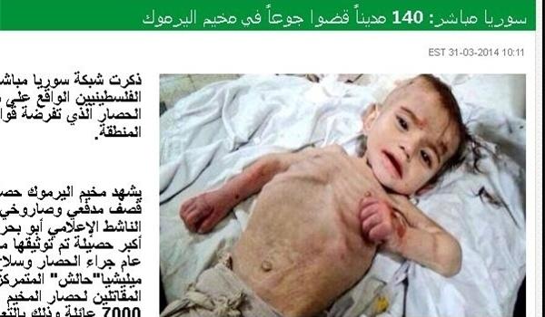 bayi palestina 31 Maret 2014