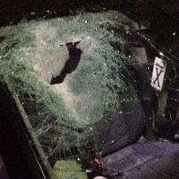 Wanita_Palestina_Dibunuh_Secara_Brutal