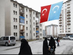 Dina Sulaeman: Kenapa Pemerintah RI Tak Dukung Uighur Tapi Dukung Rohingya-Palestina?