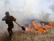 Delegasi Israel ke Qatar, Minta Pimpinan Hamas Hentikan Serangan Balon Pembakar