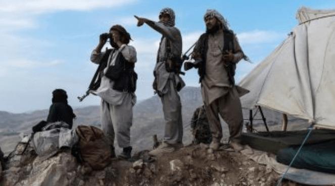 Taliban Klaim Kuasai 90 Persen Perbatasan Afghanistan