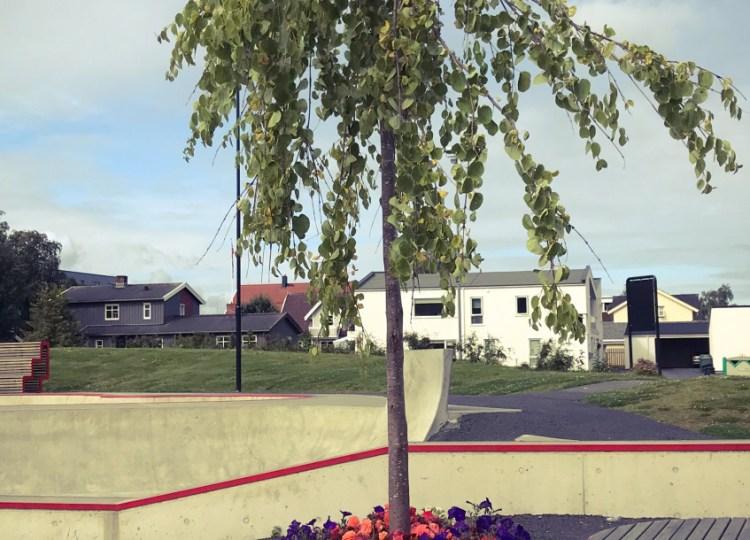 Stjørdal skatepark